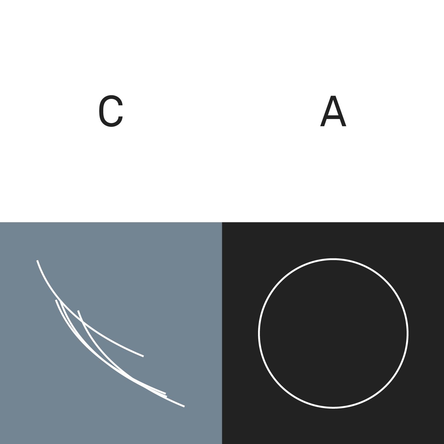 Adam Basanta — Circular Arguments